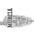 what to see in murcia spain text word cloud vector image vector image