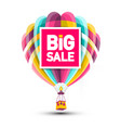 big sale hot air balloon icon vector image vector image