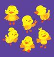 cute baby duckling animal mascot drawing set vector image vector image