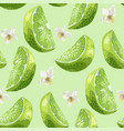 lime slices and flowers seamless pattern set in vector image