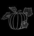 pumpkin with leaves white on blackboard vector image vector image