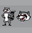 racoon mascot in set vector image