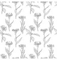 seamless pattern with drawing cornflowers vector image