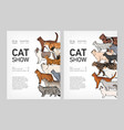 set of trendy flyer or poster templates for cat vector image vector image