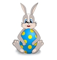 easter bunny with easter egg vector image
