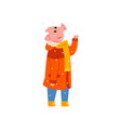 cute pig character dressed in warm bright clothes vector image vector image