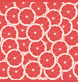 red grapefruit vector image vector image