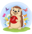 cartoon hedgehog holding apple in grass vector image vector image