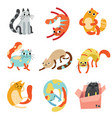 collection of cute funny cats in different poses vector image vector image