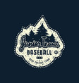 emblem junior baseball team with rough texture vector image vector image