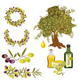 olive oil and berries green tree organic vector image vector image