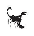 scorpio black silhouette scorpio zodiac sign vector image