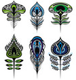 stylized peacock feathers vector image vector image