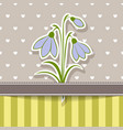 vintage card with bunch of snowdrops vector image