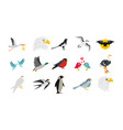 birds icon set flat style vector image vector image