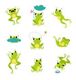 cute green frog smiling jumping and croaking