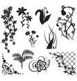 floral design elements - set vector image