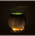 a cauldron for halloween witch a pot for a witch vector image