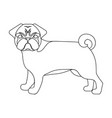 bulldog single icon in outline stylebulldog vector image vector image