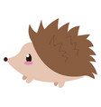cute little hedgehog on white background vector image
