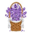 Lavenders basket vector image vector image