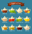 types of tea set of glass kettles with different vector image vector image