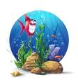 underwater rocks with seaweed