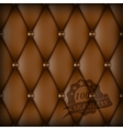 Brown Buttoned luxury leather vector image vector image