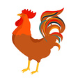 Cock rooster vector image vector image