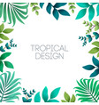 colorful summer tropical background with exotic vector image vector image