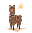 cute llama with ethnic design elements vector image