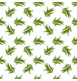 elegant seamless pattern with eucalyptus leaves vector image vector image