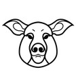 linear stylized drawing of pig swine vector image vector image