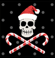 Pirate christmas vector image vector image