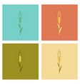 assembly flat natural triticum vector image vector image