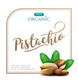 frame realistic pistachio with leaves isolated vector image