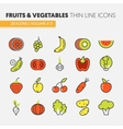 Fruits and Vegetables Thin Line Icons Set vector image vector image