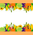 vegetables banner template background vector image vector image