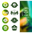 Vintage premium labels set on tile structured vector image vector image