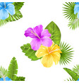 seamless floral pattern with hibiscus flowers and vector image