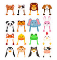 animals cartoon hat vector image vector image