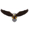 cartoon bald eagle with spreaded wings vector image vector image