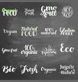 eco concept lettering set on chalkboard background vector image vector image