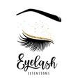 eyelash extensions logo vector image vector image