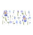 blue flower set vector image vector image