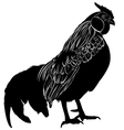 cock poultry rooster vector image