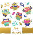 collection funny owls with golden vector image