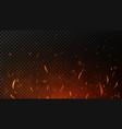fire sparks on dark transparent background flying vector image vector image