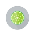 Lime Icon vector image vector image