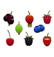 Sweet ripe juicy isolated berries vector image